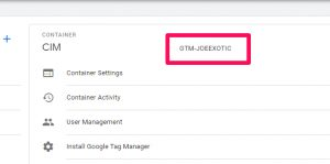 Google Tag Manager Container ID